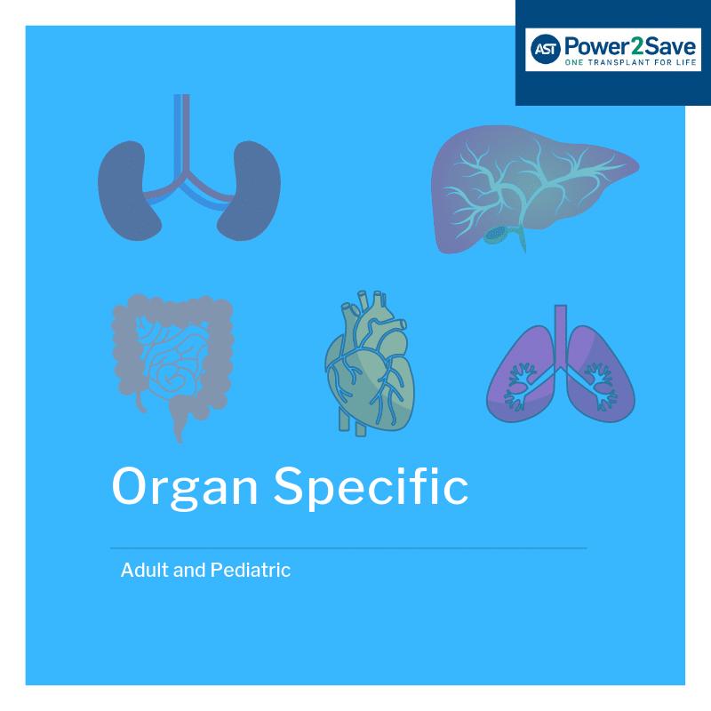 Organ Specific (1)